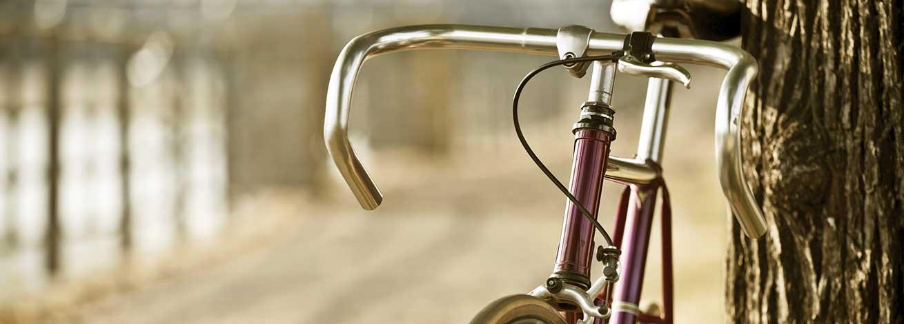 02_fiets_boom